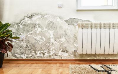 Comment empêcher l'humidité de remonter dans les murs ?